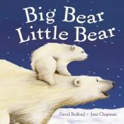 Big Bear Little Bear by David Bedford