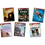 Oxford Reading Tree: Level 15: Treetops Non-Fiction: Pack (6 Books, 1 of Each Title) by Sarah Fleming