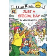 Little Critter: Just a Special Day by Mercer Mayer