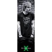Ed Sheeran Skull Door Poster