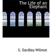 The Life of an Elephant by S Eardley-Wilmot