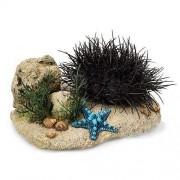 EBI Sea Hedgehog small 17,5 x 13 x 8,5 cm