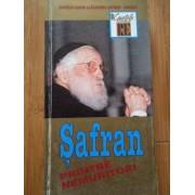 Safran Printre Nemuritori - Manase Radnev Ticu Goldstein