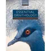 Essential Ornithology by Graham Scott