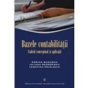 Bazele contabilităţii. Cadrul conceptual şi aplicaţii