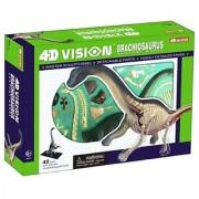 Famemaster 4D Vision Brachiosaurus Anatomy Model