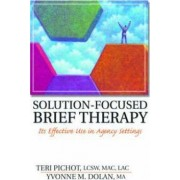 Solution-Focused Brief Therapy by Yvonne M. Dolan