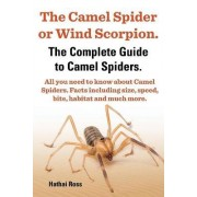 The Camel Spider or Wind Scorpion, The Complete Guide to Camel Spiders.: With All You Need to Know About Camel Spiders by Ross Hathai