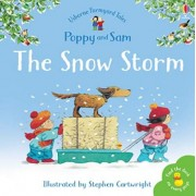 The Snow Storm by Heather Amery