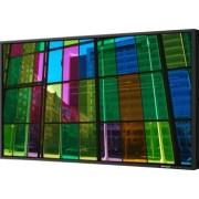 Monitor LCD 42 Sharp PN-E421 Full HD