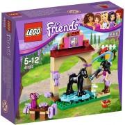 LEGO Friends 41123 Veulen wasplaats