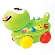 Bate e Volta Tartaruga Musical - Zoop Toys