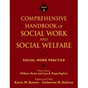 Comprehensive Handbook of Social Work and Social Welfare: Social Work Practice v. 3 by Karen Sowers