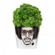 Ghiveci pentru flori, DONKEY Herbal Jimmy Small