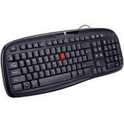 iBall Winner USB Standard Keyboard