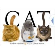 Cat by Matthew Van Fleet