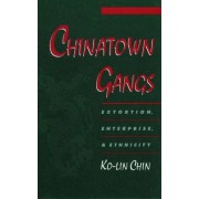 Chinatown Gangs by Ko-Lin Chin