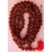Rudraksha Mala - Nepal - 108 Beads - 5 Faces