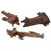 EBI Nature - Wood Jati 15-25cm S
