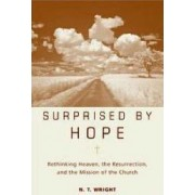 Surprised by Hope by N. T. Wright