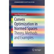 Convex Optimization in Normed Spaces by Juan Peypouquet