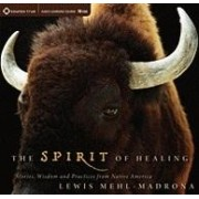 The Spirit of Healing by Lewis Mehl-Madrona