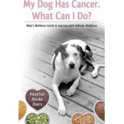 My Dog Has Cancer. What Can I Do? by Heather Beuke Diers