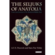 The Seljuks of Anatolia by A. C. S. Peacock
