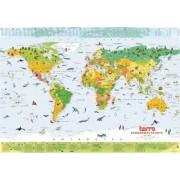 Columbus Globus Columbus carte du monde TERRA pour enfants, 100 x 66 cm