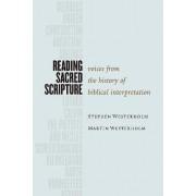 Reading Sacred Scripture by Stephen Westerholm