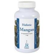 Holistic Mangan 100 kapslar