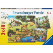 PUZZLE PADURE ZOO SI ANIMALE DOMESTICE 3x49 PIESE Ravensburger