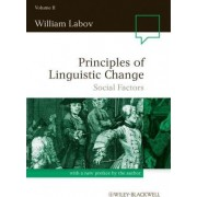 Principles of Linguistic Change: Social Factors v. 2 by William Labov