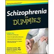 Schizophrenia For Dummies by Jerome Levine