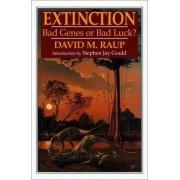 Extinction by David M. Raup
