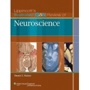 Lippincott's Illustrated Q&A Review of Neuroscience by Duane E. Haines