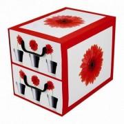 MISS SPACE Pudełko kartonowe 2 szuflady pionowe DONICZKI-GERBERY