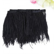 Ostrich Feather Dyed Fringe 1 Yard Trim Black