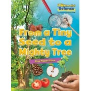 Fundamental Science Key Stage 1: From a Tiny Seed to a Mighty Tree: How Plants Grow 2016 by Ruth Owen