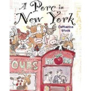 A Porc in New York by Catherine Stock