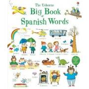 Big Book of Spanish Words by Mairi Mckinnon