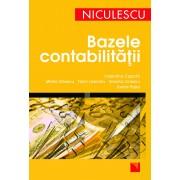 Bazele contabilitatii (eBook)
