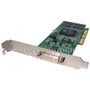 HP nVidia GeForce2 MX200 64MB with DVI-I (LP w/ brkt for SFF chassis) - Cable AV