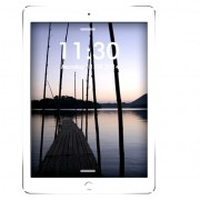 Apple iPad Air 2 (16GB, Wi-Fi + Cellular, Silver, Local Stock)