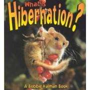 What is Hibernation? by John Crossingham
