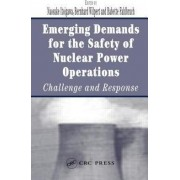 Emerging Demands for the Safety of Nuclear Power Operations by Naosuke Itoigawa