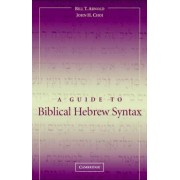 A Guide to Biblical Hebrew Syntax by Bill T. Arnold