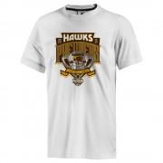 AFL 2015 Hawthorn Hawks Mens Premiership T-Shirt