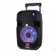 Boxa cu Bluetooth, Microfon si Telecomanda Temeisheng SL07