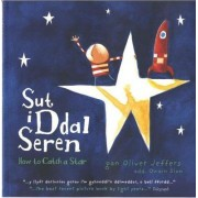 Sut i Ddal Seren / How to Catch a Star by Oliver Jeffers